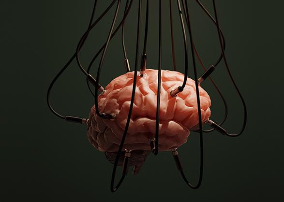 cognition-01